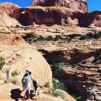 cropped-moab1.jpg